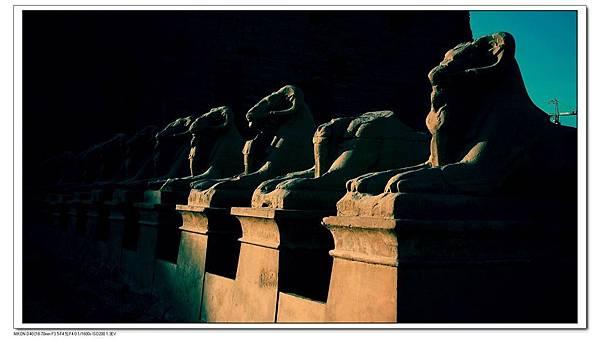 卡納克神廟前的山羊.jpg