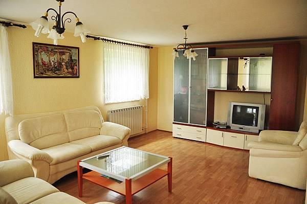 House Franjkovićlivingroom.JPG