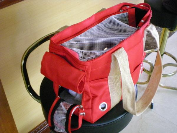 偶怡的紅色提袋
