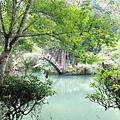 溪頭  大學池