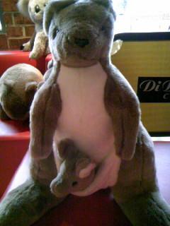 澳洲餐廳的袋鼠玩偶~超妙