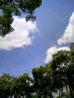 好漂亮的天空~光這樣看心情就很好了