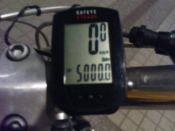 DSC03246(001).jpg