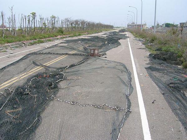 漁網路。這..這是怎樣?馬路變曬漁網用?