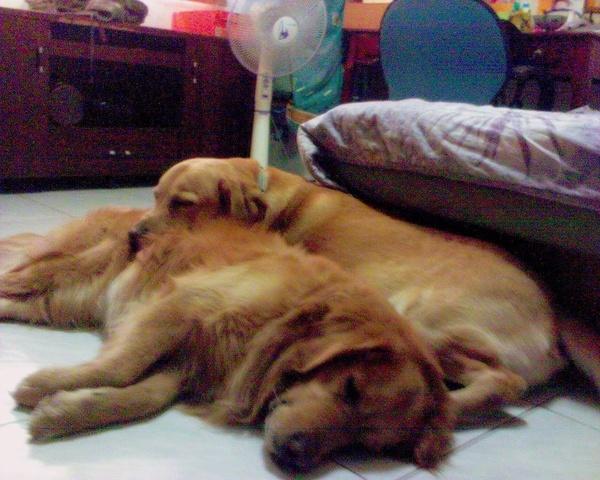 躺在一起真舒服