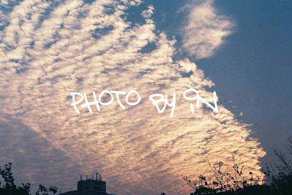 Canon FTb_F1000006_雲海.JPG