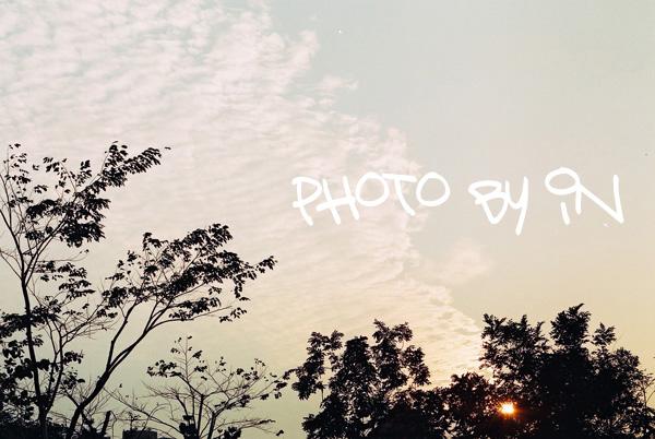 Canon FTb_F1000005_午後.JPG