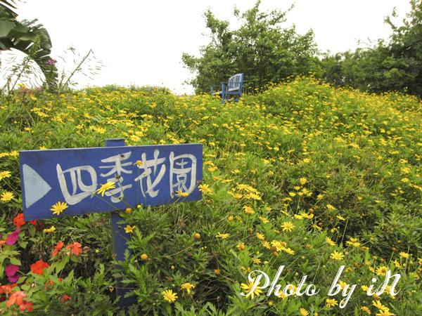 TINA廚房橋頭店_四季花園.JPG