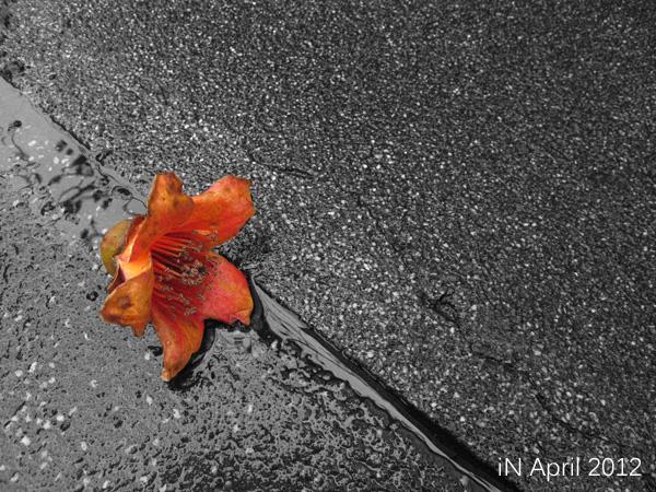 April-lie down