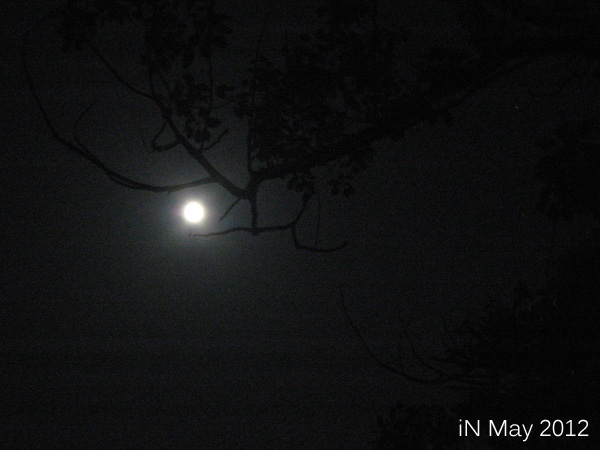 May-Super Moon