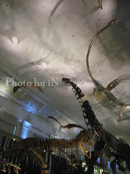 勸業銀行_土銀展示館_超壯觀的恐龍們