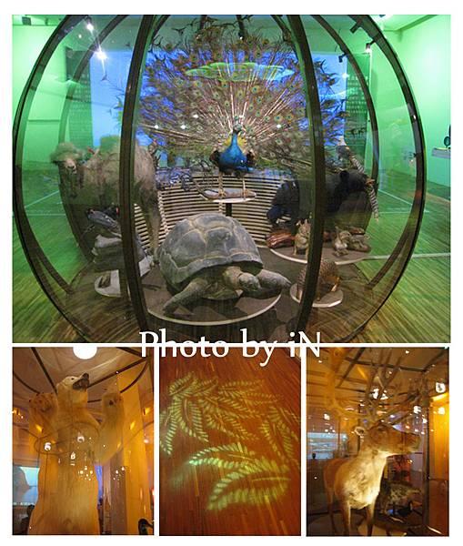 國立台灣博物館_遇見大未來特展