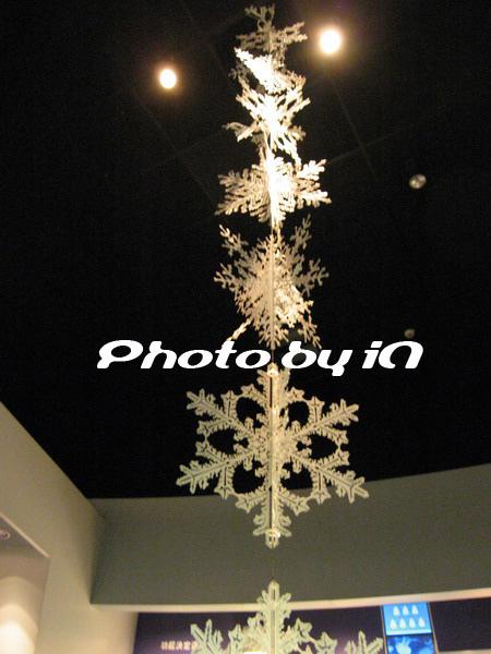 雪花片片.JPG