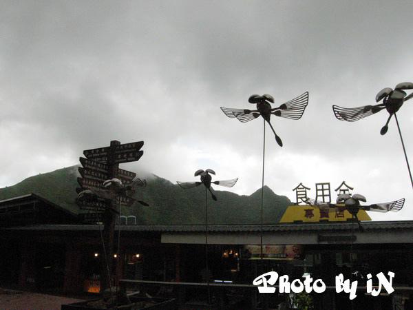 黃金博物館_飛翔.JPG