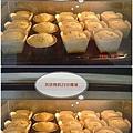 分蛋式40%糙米胖蛋糕成長照
