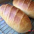 優酪乳酵種法國麵包