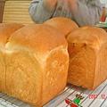 小麥種蕎麥土司