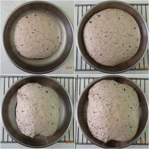 紫米薏仁發酵