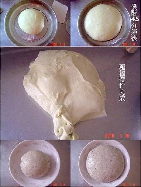 液種高麗菜1.jpg