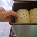 茶油青醬全麥土司