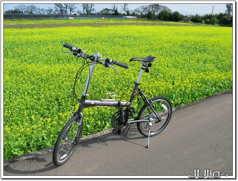bike (5).jpg