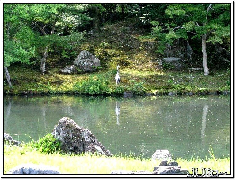 (嵐山)天龍寺 (8).jpg