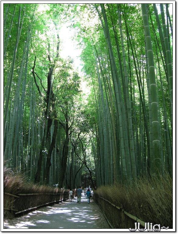 (嵐山)竹林步道.jpg