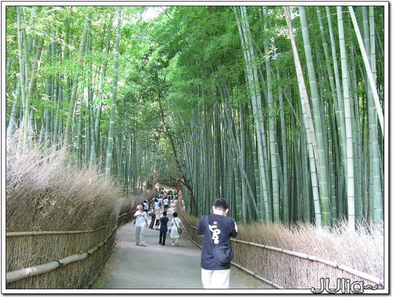 (嵐山)竹林步道 (1).jpg