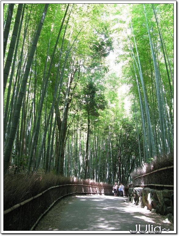 (嵐山)竹林步道 (4).jpg