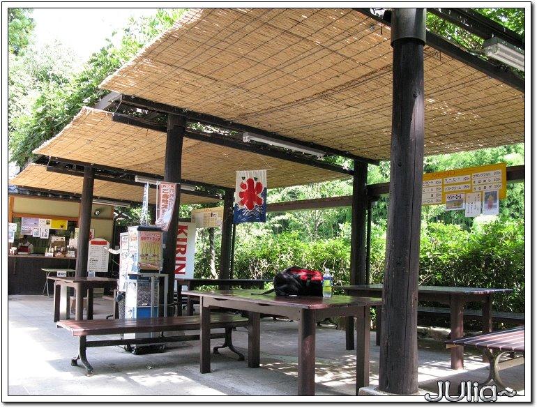 (嵐山)觀光小火車 (7).jpg