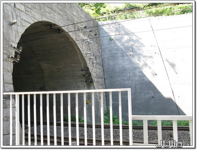 (嵐山)觀光小火車 (8).jpg
