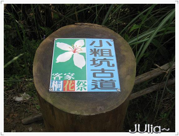 小粗坑古道。桐花祭。 (8).jpg