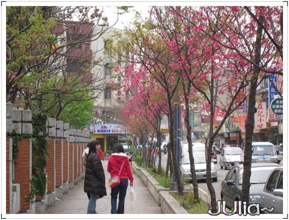 也是。櫻花。 (5).jpg