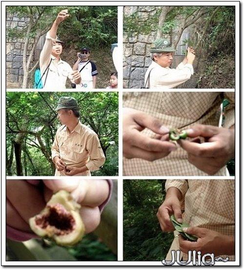 (三峽)滿月圓森林遊樂區 (5).jpg