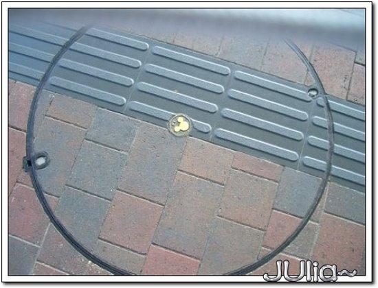 (香港)迪士尼樂園 (9).jpg