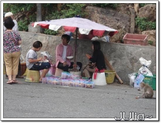 (泰國)猴山 (10).jpg