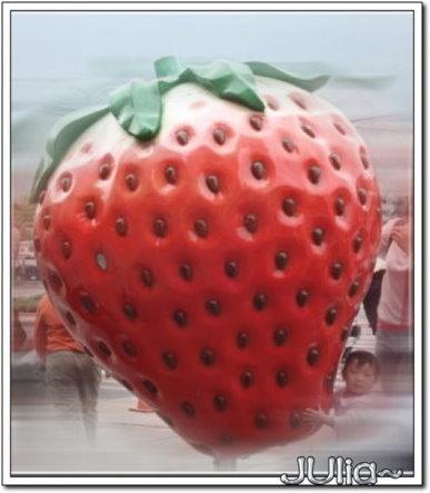 (苗栗)大湖草莓文化館 (5).jpg