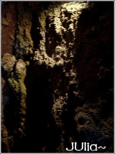 森林 (8).jpg