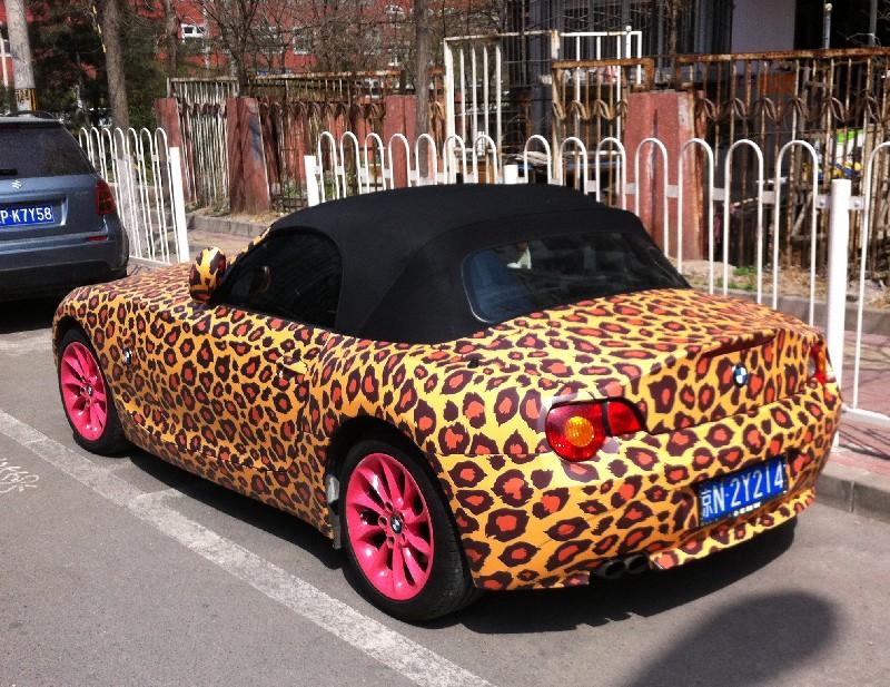 leopard-pink-bmw-thumb-800x617-786728