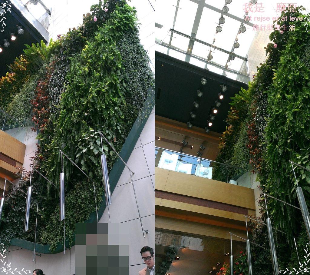 擁有8000多種植物的垂直花園