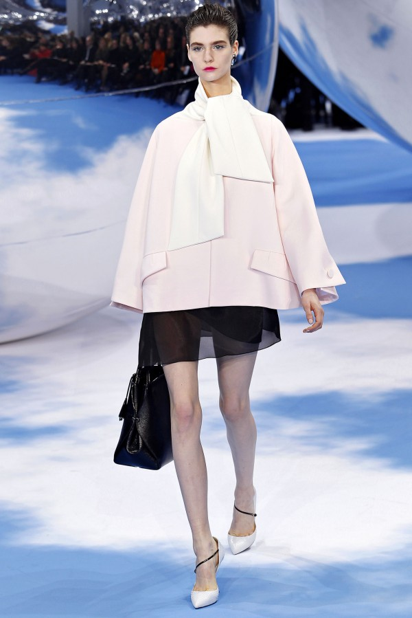 Fall-Winter 2013-2014 Christian Dior(7)