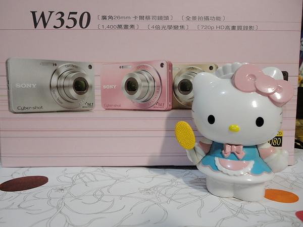 DSC00054 (2)-1.jpg