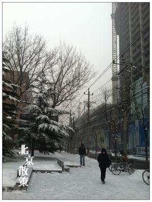 20121214今年第三場雪