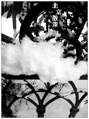 20121214下雪天泰利的鐵欄杆