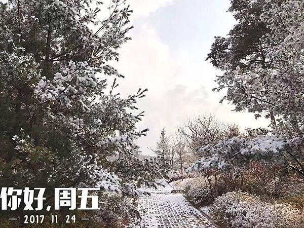 WeChat 圖片_20171124110919.jpg