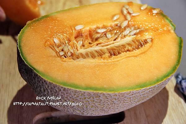 rock melon.JPG