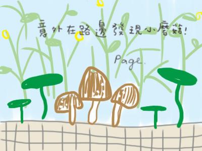 路邊的小蘑菇.jpg