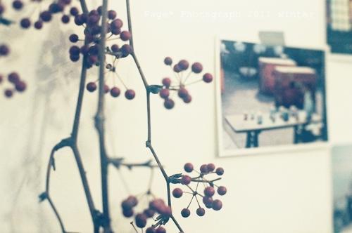 20111225_ca va_015.JPG