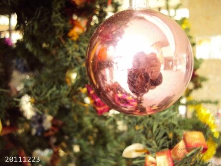 2011_Dec_014.JPG