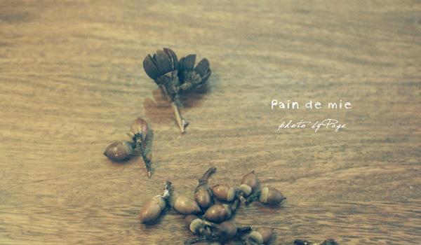 Pain de mie017